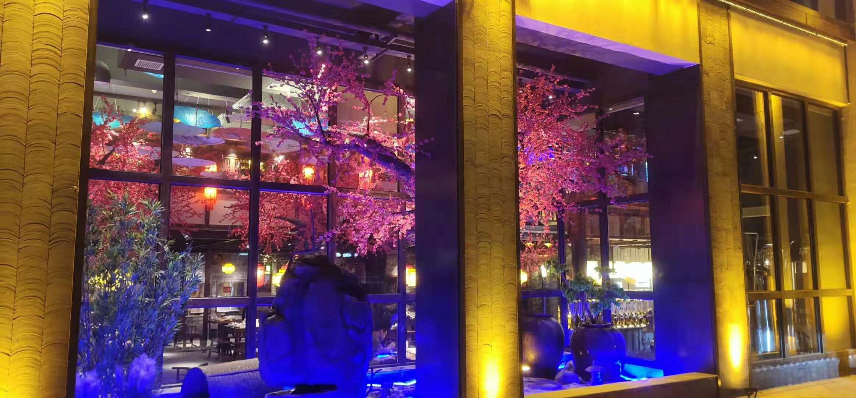 在餐厅灯光设计中,不同的色调该如何应用?